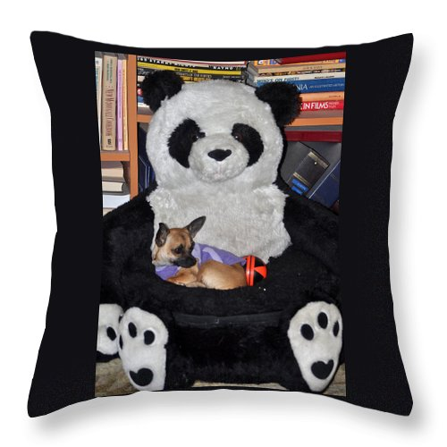 Animals Throw Pillow featuring the photograph Button And The Panda Bear by Jay Milo