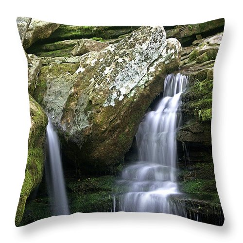 Waterfall Throw Pillow featuring the photograph By The Kings River by Marty Koch