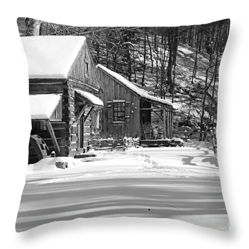 Paul Ward Throw Pillow featuring the photograph Cabin Fever In Black And White by Paul Ward