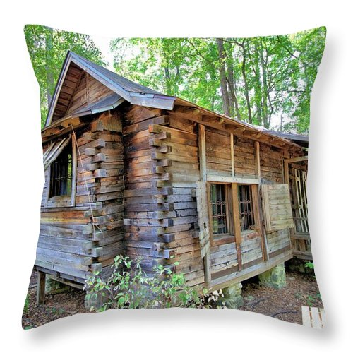 5970 Throw Pillow featuring the photograph Cabin In The Woods by Gordon Elwell