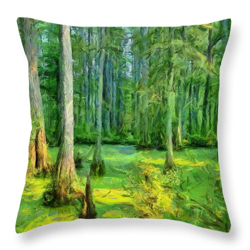 Swamp Throw Pillow featuring the photograph Cache River Swamp by Michael Flood