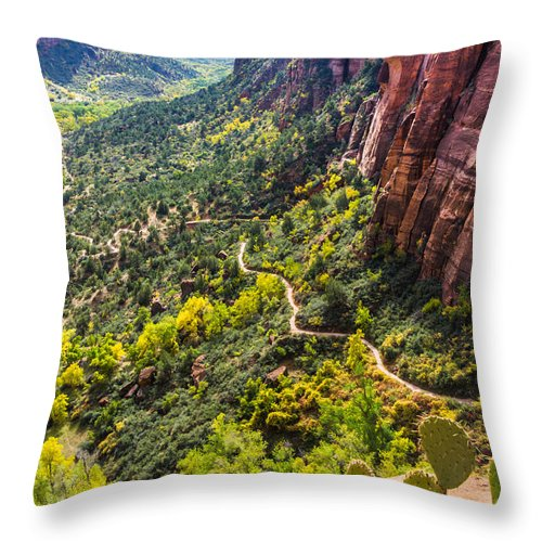 Zion Throw Pillow featuring the photograph Cacti View Of Zion by Silken Photography
