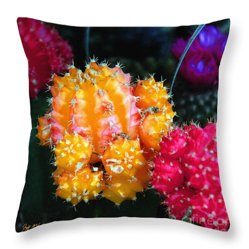 Roses Throw Pillow featuring the photograph Cacti Watercolor Effect by Jeff McJunkin