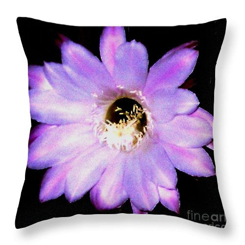 Real Photo Throw Pillow featuring the photograph Cactus Flower by Gail Matthews