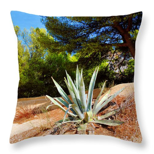Cactus Throw Pillow featuring the photograph Cactus On A Rocky Coast Of French Riviera by Maja Sokolowska