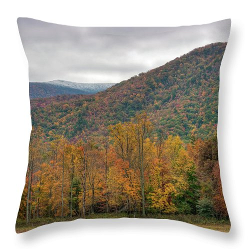 Scenics Throw Pillow featuring the photograph Cades Cove, Great Smoky Mountains by Fotomonkee