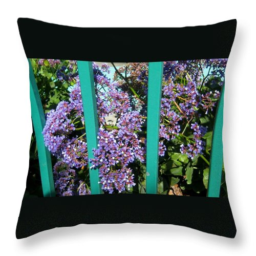 Landscape Throw Pillow featuring the photograph Caged Beauty by Melissa McCrann