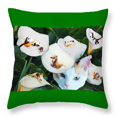 Cat Throw Pillow featuring the digital art Cala In Callas by Lisa Yount