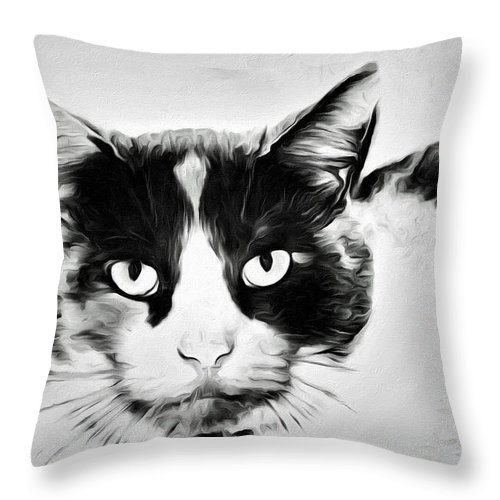 Cat Portrait Throw Pillow featuring the photograph Calico Kitty by Alice Gipson