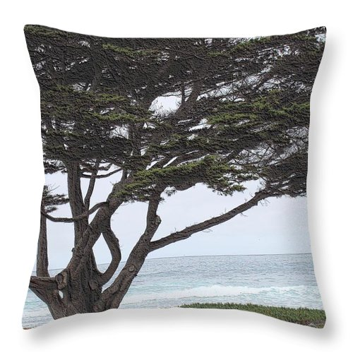 Throw Pillow featuring the photograph California Coast # 8 by G Berry