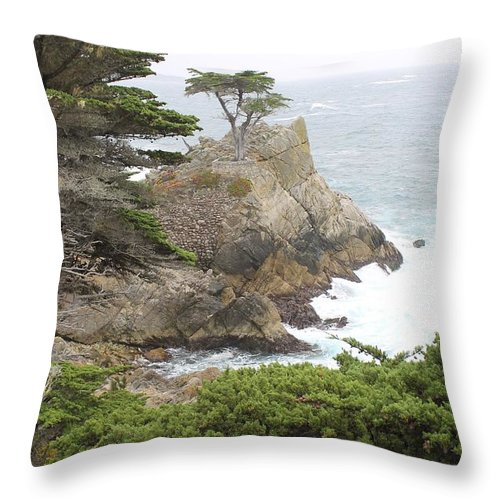 Throw Pillow featuring the photograph California Coast # 9 by G Berry