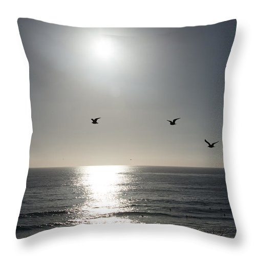 California Throw Pillow featuring the photograph California Seagulls Where Are They Headed by JG Thompson