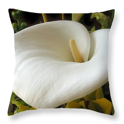 Flower Throw Pillow featuring the photograph Calla by Jessica Jenney