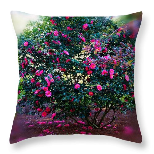 Flower Throw Pillow featuring the photograph Camellia Ball by Valery Bonbon