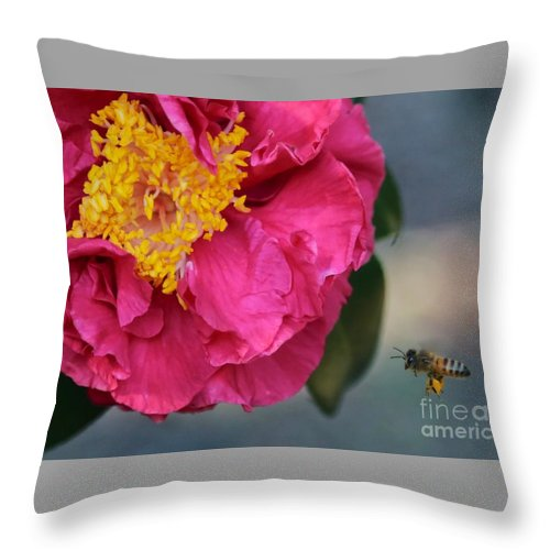 Camellia Throw Pillow featuring the photograph Camellia With Bee by Carol Groenen