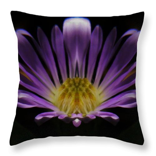 Canadian Purple Wildflower Throw Pillow featuring the photograph Canadian Purple Wildflower by Barbara St Jean
