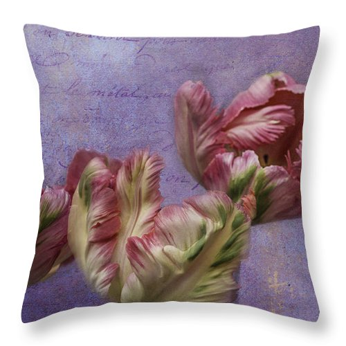 Tulips Throw Pillow featuring the photograph Cancan Parrot Tulips by Diane Schuster