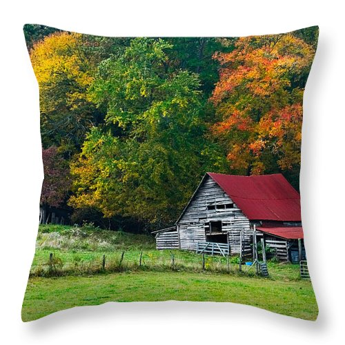 Appalachia Throw Pillow featuring the photograph Candy Mountain by Debra and Dave Vanderlaan