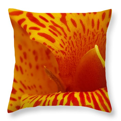 Card Throw Pillow featuring the photograph Canna Lily by Guy Shultz