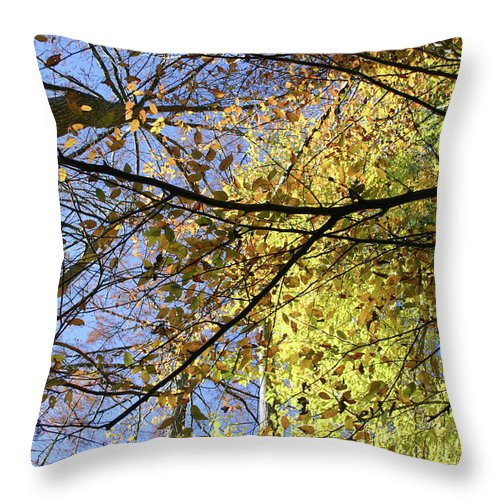 Autumn Throw Pillow featuring the photograph Canopy by Nina Fosdick