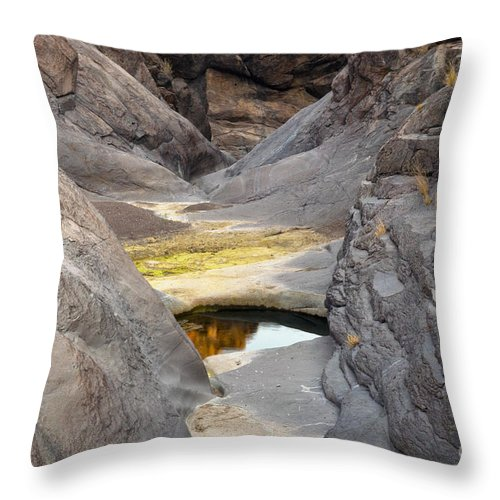 Big Bend Ranch State Park Texas Parks Canyon Canyons Water Pool Pools Landscape Landscapes Rock Trail Trails Throw Pillow featuring the photograph Canyon Eye by Bob Phillips