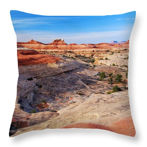 Canyon Throw Pillow featuring the photograph Canyonlands Landscape by Cascade Colors