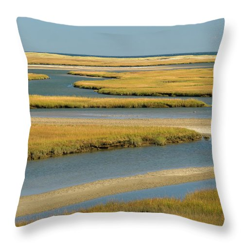 Grass Throw Pillow featuring the photograph Cape Cod Wetlands by Frankvandenbergh