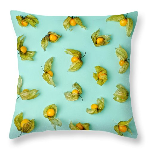 Winter Cherry Throw Pillow featuring the photograph Cape Gooseberries Physalis, Winter by Juj Winn
