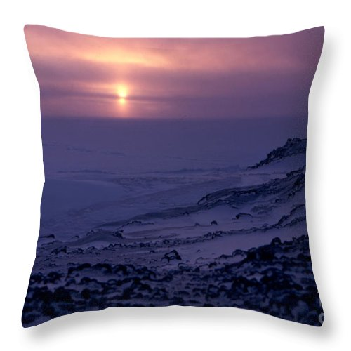 Cape Evans Throw Pillow featuring the photograph Capeevans-antarctica-g.punt-8 by Gordon Punt