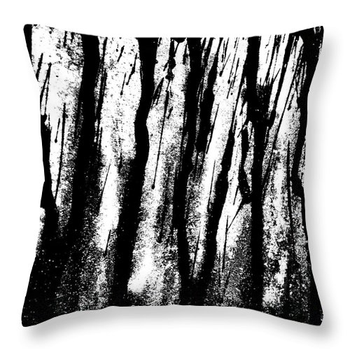 Rain Throw Pillow featuring the photograph Car Door B by J Roustie