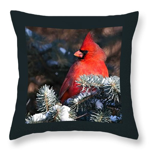 Cardinal Throw Pillow featuring the painting Cardinal And Evergreen by Shere Crossman