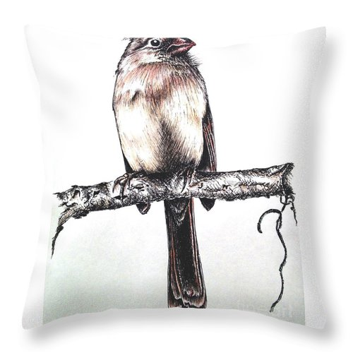 Ink Sketch Throw Pillow featuring the drawing Cardinal Female by Katharina Filus