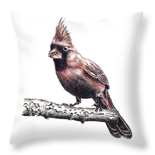 Ink Sketch Throw Pillow featuring the drawing Cardinal Male by Katharina Filus