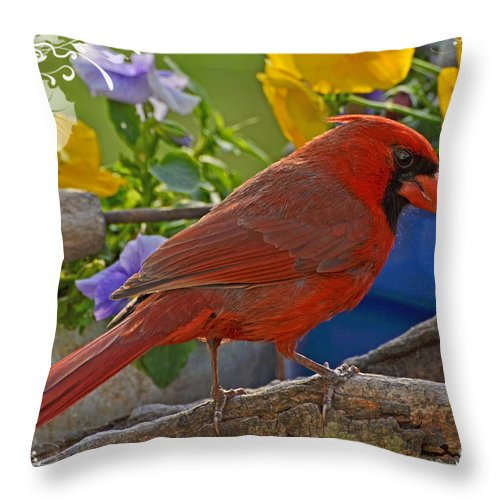 Nature Throw Pillow featuring the photograph Cardinal With Pansies And Decorations by Debbie Portwood