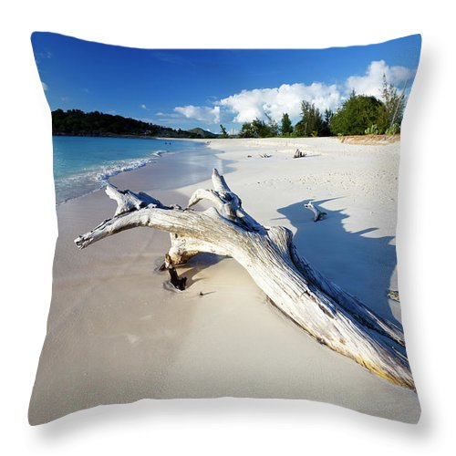 Water's Edge Throw Pillow featuring the photograph Caribbean Beach With Driftwood by Michaelutech