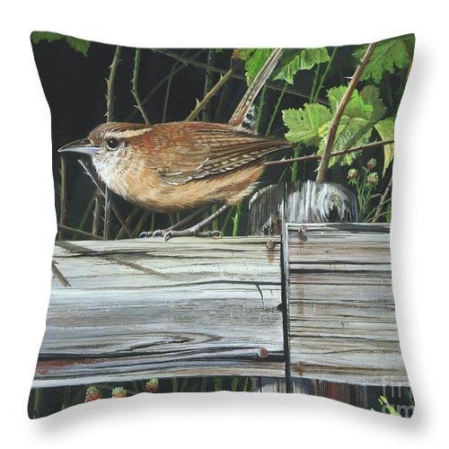 Carolina Wren Throw Pillow featuring the painting Carolina Wren by Mike Brown
