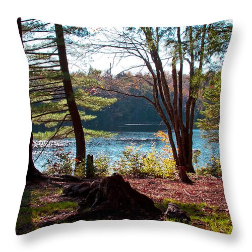 Adirondack's Throw Pillow featuring the photograph Cary Lake In The Fall by David Patterson