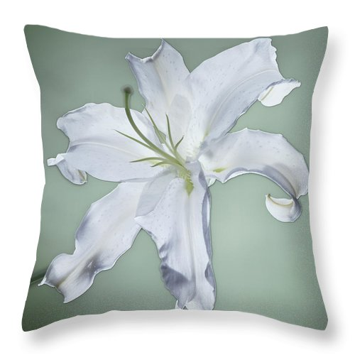 Casablanca Lily Throw Pillow featuring the photograph Casablanca by Kirk Ellison
