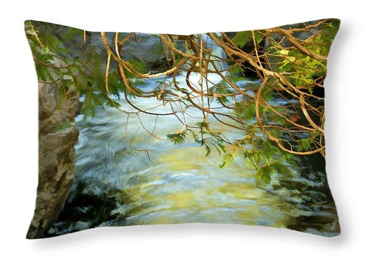 Cascade River Throw Pillow featuring the photograph Cascade Cedar by Bill Morgenstern
