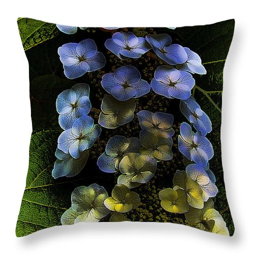 Flower Throw Pillow featuring the photograph Cascading Flower by David Patterson