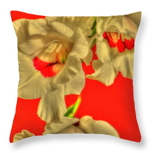 Flower Throw Pillow featuring the photograph Cascading Gladiolas by Deborah Crew-Johnson