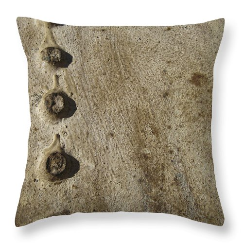 Cast Throw Pillow featuring the photograph Cast Iron by Eric Canuel