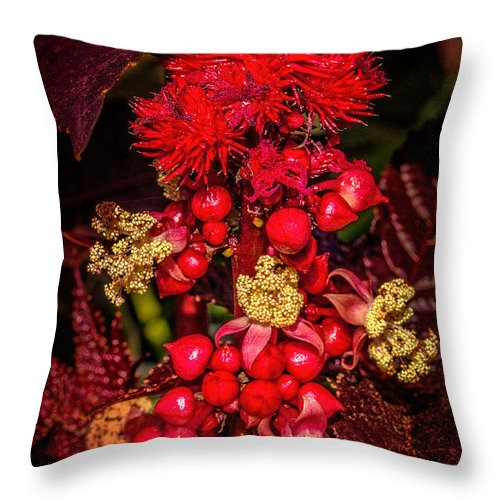 Castor Oil Throw Pillow featuring the photograph Caster Oil Plant by Chris Lord