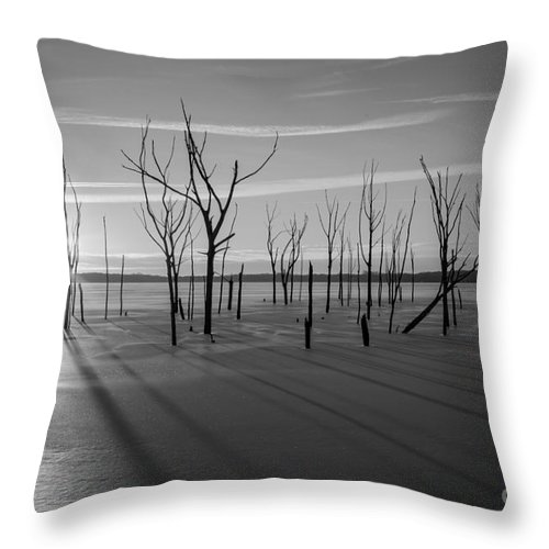 Frost Bite Throw Pillow featuring the photograph Casting Shadows Bw by Michael Ver Sprill