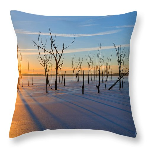 Frost Bite Throw Pillow featuring the photograph Casting Shadows by Michael Ver Sprill