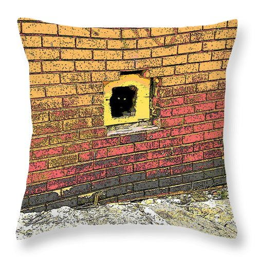 Cat Throw Pillow featuring the photograph Cat In A Hole In A Wall by Rebecca Korpita