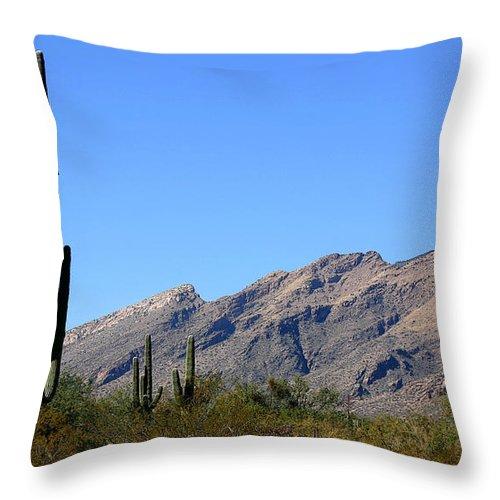 Mountain Throw Pillow featuring the photograph Catalinas by Joe Kozlowski