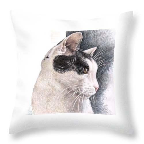 Cat Throw Pillow featuring the drawing Cats View by Nicole Zeug