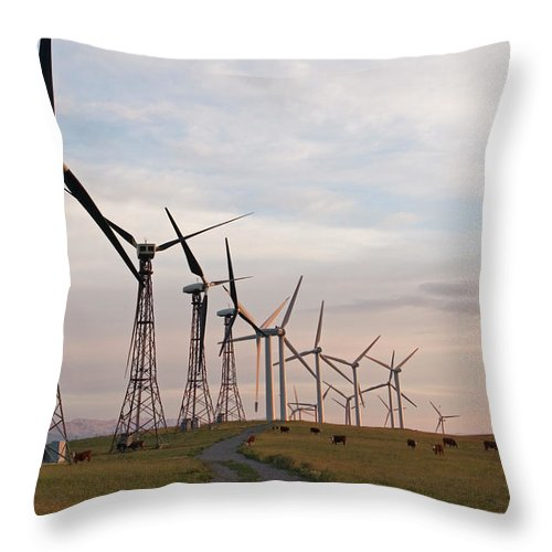 Air Throw Pillow featuring the photograph Cattle Graze In Field Next To Windmills by Henry Georgi