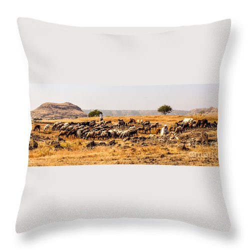 Cattle Throw Pillow featuring the photograph Cattles by Vijay Sonar